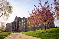 RHIT_Campus_Percopo_Cherry_Blossoms-2698.jpg