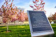 RHIT_Campus_White_Chapel_Cherry_Blossoms-2755.jpg